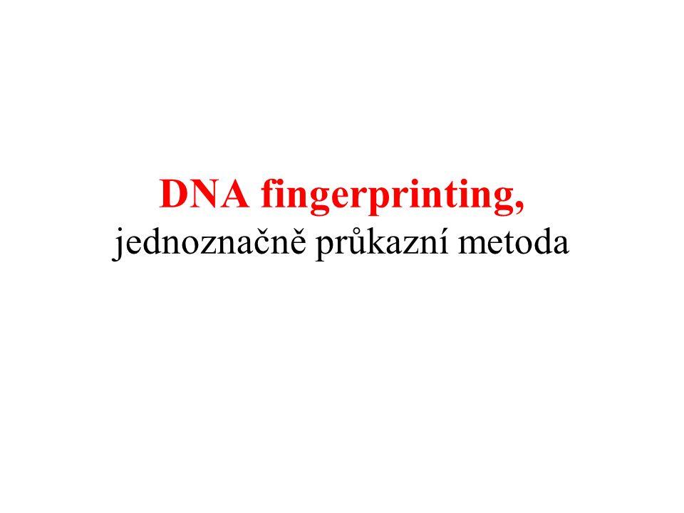 DNA fingerprinting, jednoznačně průkazní metoda