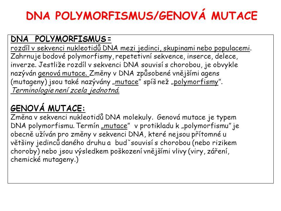 DNA POLYMORFISMUS/GENOVÁ MUTACE DNA POLYMORFISMUS = rozdíl v sekvenci nukleotidů DNA mezi jedinci, skupinami nebo populacemi.
