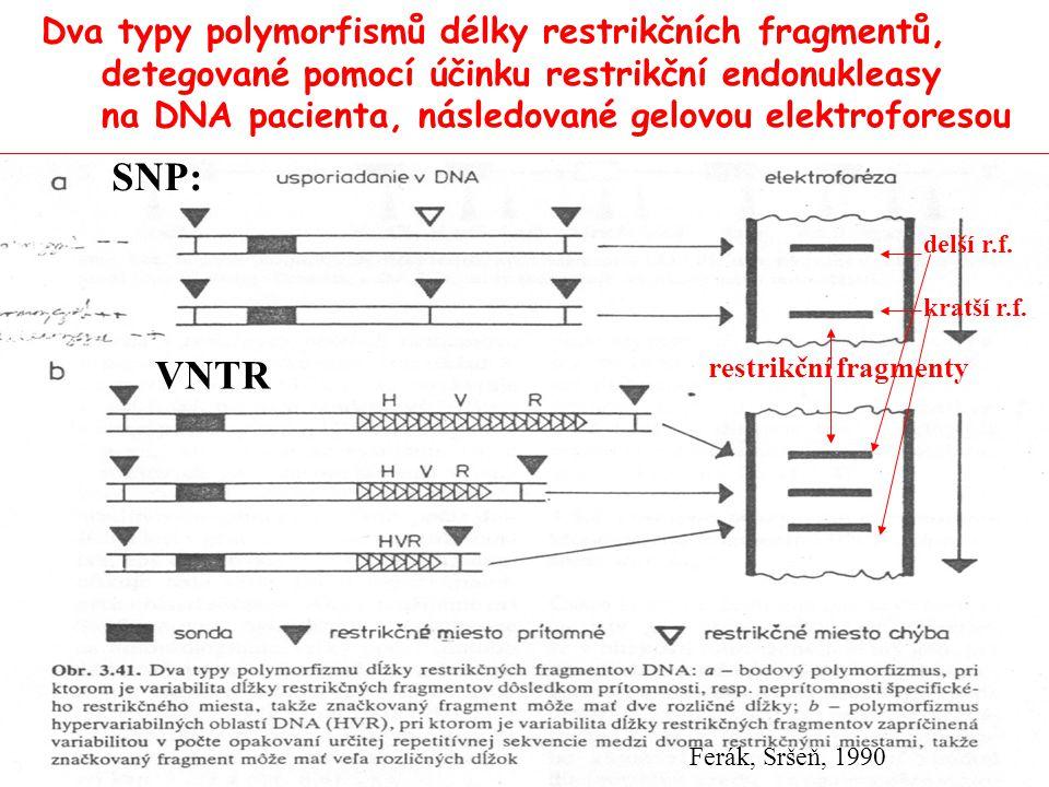 Přímá DNA diagnostika cystické fibrosy (na videu): Přímá DNA diagnostika cystické fibrosy pomocí PCR: Vyšetření matky ukázalo přítomnost mutace delta F 508 = delece tří nukleotidů kodonu pro fenylalanin v posici 508 Deleční mutace se diagnostikuje po odběru DNA plodu z jedné blastomery hybridizací s primery a amplifikací úseku DNA pomocí PCR Diagnostika: po gelové elektroforéze produktu PCR reakce je mutovaná DNA o 3 nukleotidy kratší než standardní DNA Má-li pacient kratší i delší úsek DNA, je heterozygot má-li jen delší DNA, je zdravý dominantní homozygot, Má-li jen kratší úsek DNA, je recesivní homozygot a byl by postižen cystickou fibrózou → indikace k přerušení těhotenství