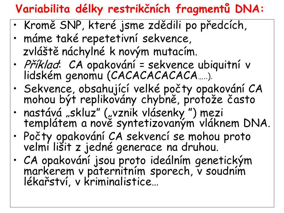 Preimplantační diagnostika.