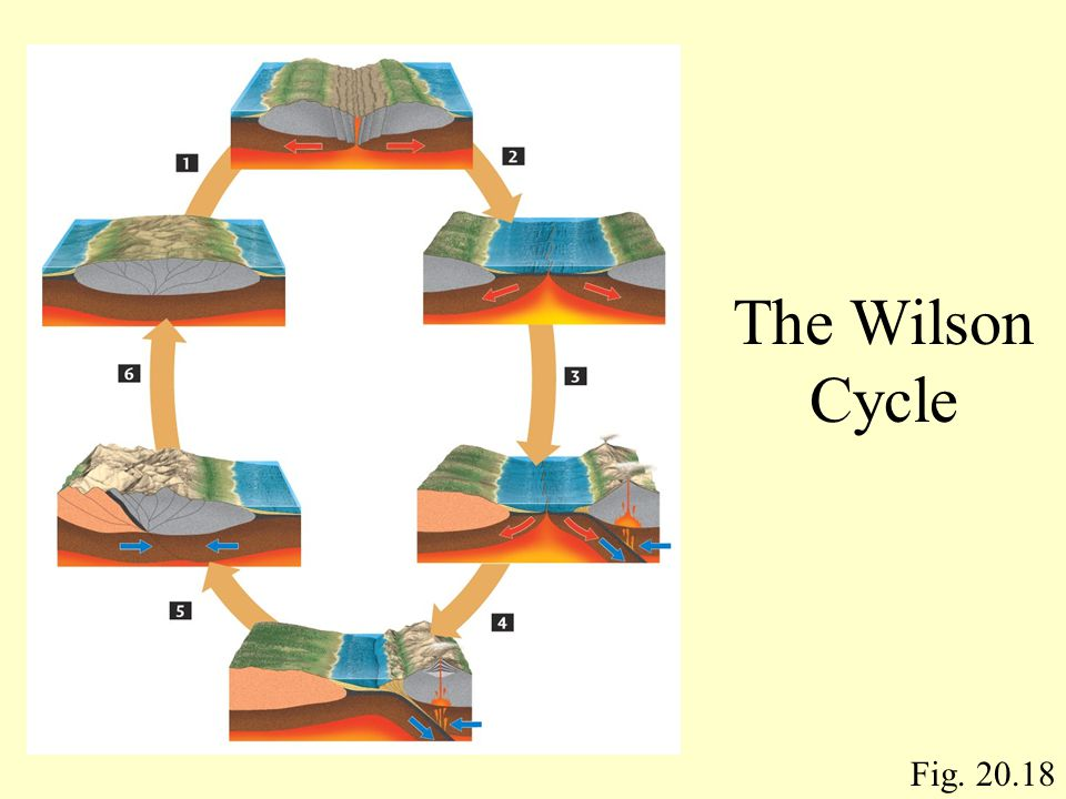 The Wilson Cycle Fig. 20.18