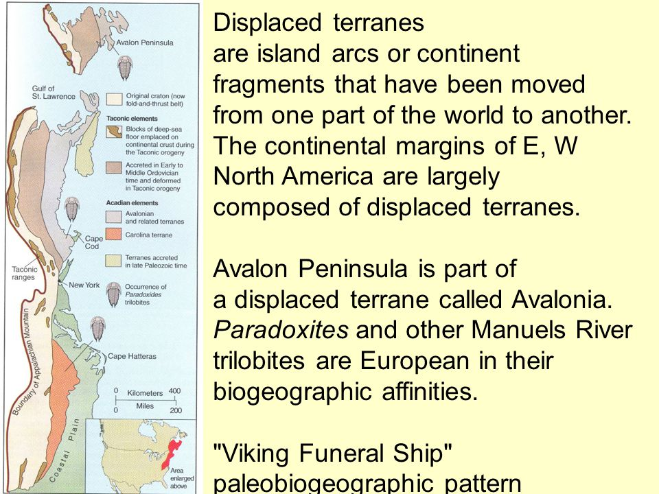 Displaced terranes are island arcs or continent fragments that have been moved from one part of the world to another.