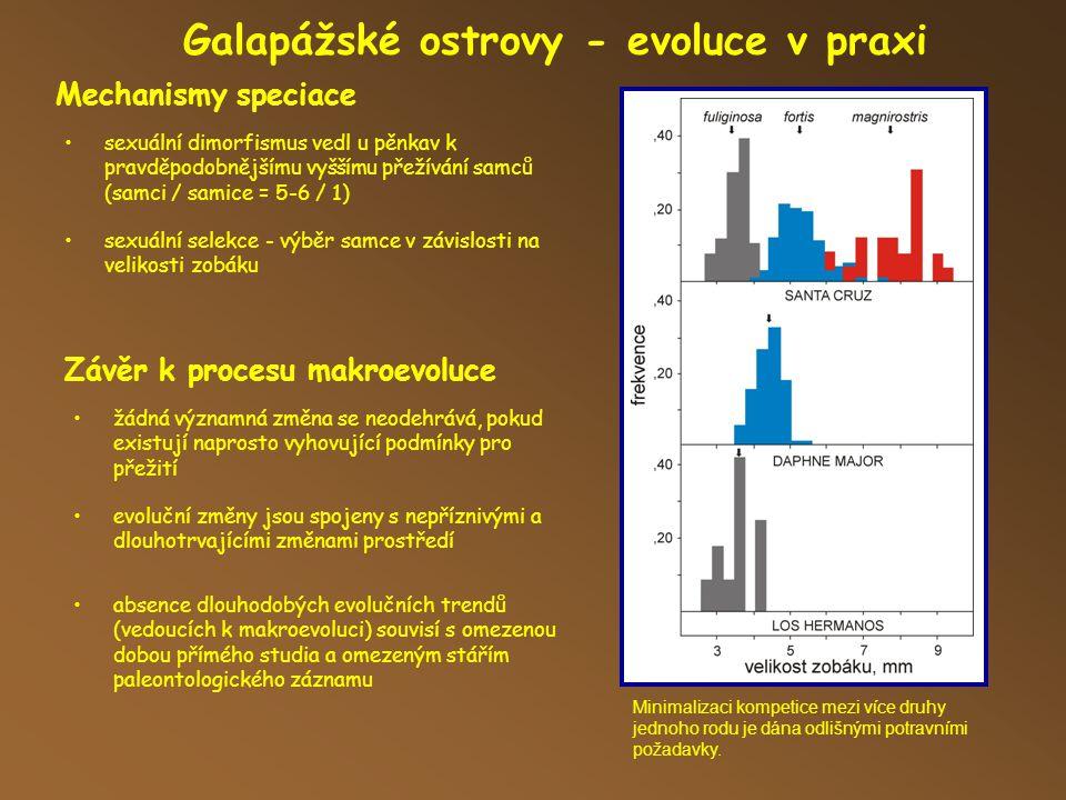 Mechanismy speciace Galapážské ostrovy - evoluce v praxi Minimalizaci kompetice mezi více druhy jednoho rodu je dána odlišnými potravními požadavky.