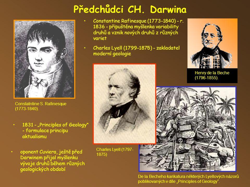 Charles Darwin Charles Darwin (1809-1882) - anglický přírodovědec, biolog a geolog.