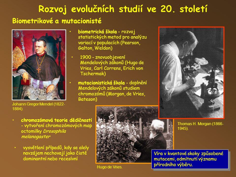 Rozvoj evolučních studií ve 20.století Biometrikové a mutacionisté Hugo de Vries.