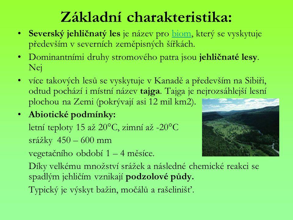Základní charakteristika: Severský jehličnatý les je název pro biom, který se vyskytuje především v severních zeměpisných šířkách.biom Dominantními dr