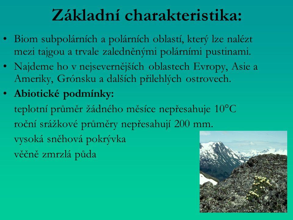 Základní charakteristika: Biom subpolárních a polárních oblastí, který lze nalézt mezi tajgou a trvale zaledněnými polárními pustinami. Najdeme ho v n
