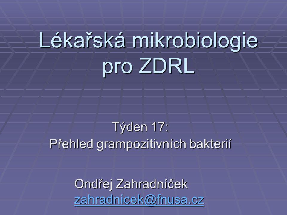 Lékařská mikrobiologie pro ZDRL Týden 17: Přehled grampozitivních bakterií Ondřej Zahradníček zahradnicek@fnusa.cz zahradnicek@fnusa.cz