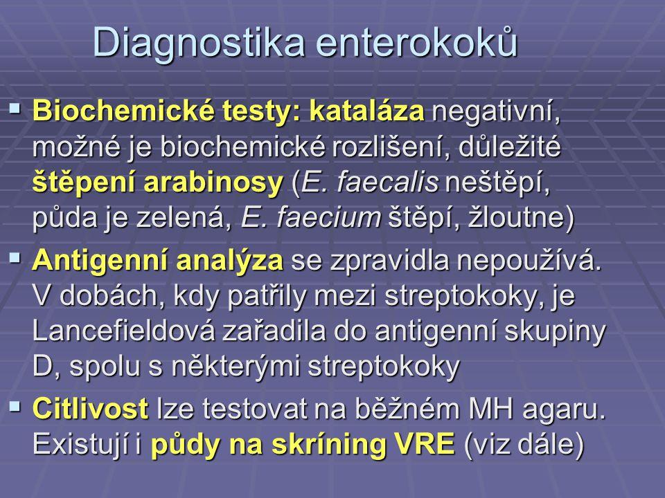 Diagnostika enterokoků  Biochemické testy: kataláza negativní, možné je biochemické rozlišení, důležité štěpení arabinosy (E. faecalis neštěpí, půda