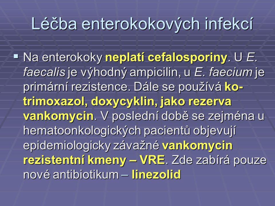Léčba enterokokových infekcí  Na enterokoky neplatí cefalosporiny. U E. faecalis je výhodný ampicilin, u E. faecium je primární rezistence. Dále se p