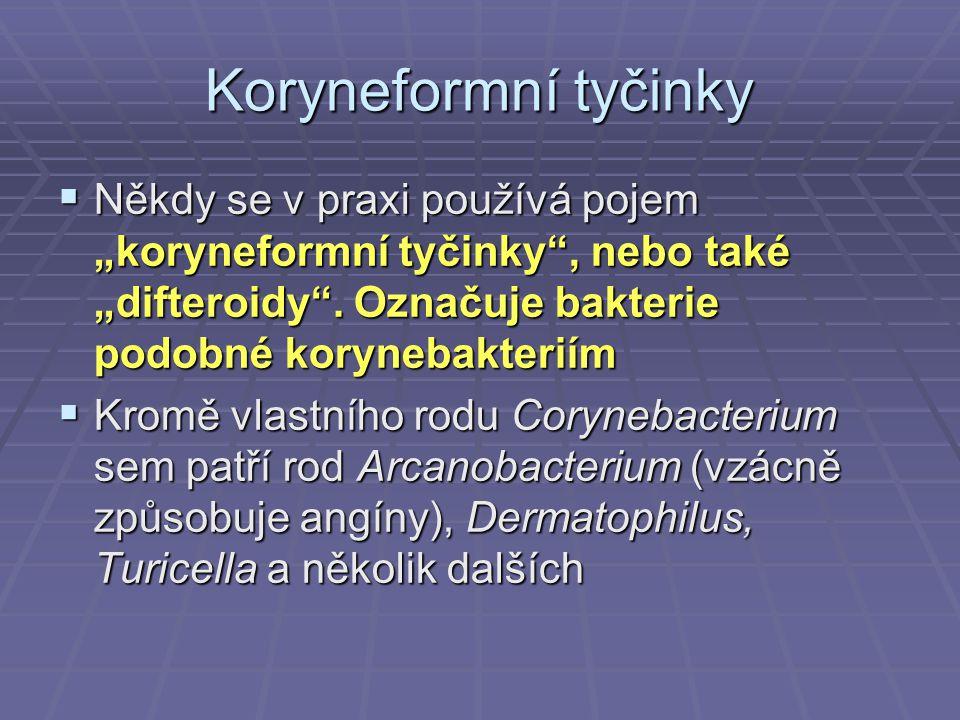 """Koryneformní tyčinky  Někdy se v praxi používá pojem """"koryneformní tyčinky"""", nebo také """"difteroidy"""". Označuje bakterie podobné korynebakteriím  Krom"""