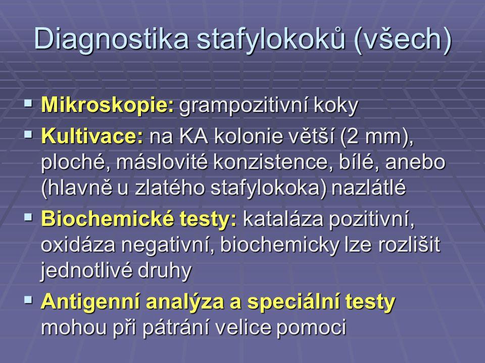 Diagnostika stafylokoků (všech)  Mikroskopie: grampozitivní koky  Kultivace: na KA kolonie větší (2 mm), ploché, máslovité konzistence, bílé, anebo