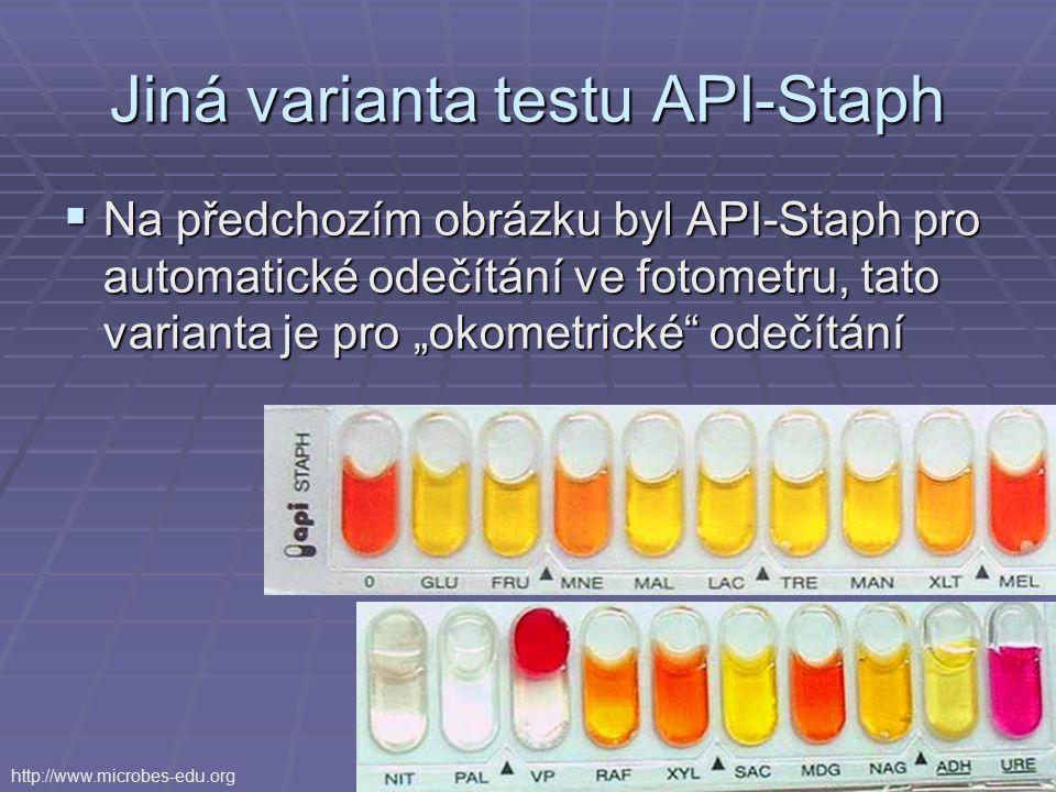 """Jiná varianta testu API-Staph  Na předchozím obrázku byl API-Staph pro automatické odečítání ve fotometru, tato varianta je pro """"okometrické"""" odečítá"""