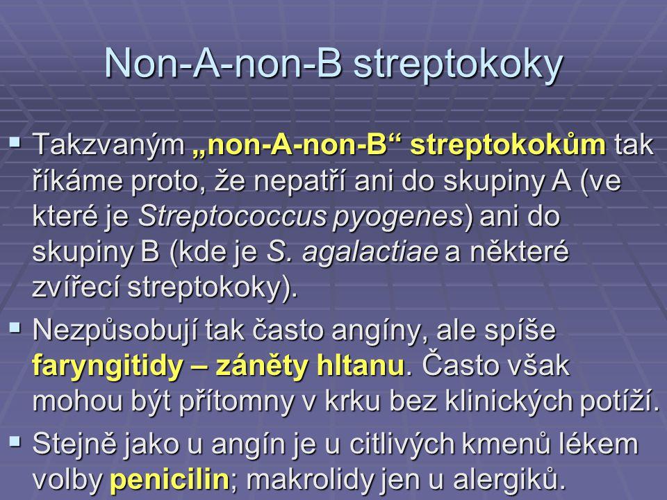 """Non-A-non-B streptokoky  Takzvaným """"non-A-non-B"""" streptokokům tak říkáme proto, že nepatří ani do skupiny A (ve které je Streptococcus pyogenes) ani"""
