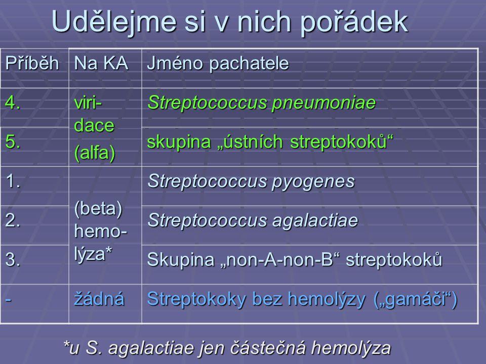 """Udělejme si v nich pořádek Příběh Na KA Jméno pachatele 4. viri- dace (alfa) Streptococcus pneumoniae 5. skupina """"ústních streptokoků"""" 1. (beta) hemo-"""