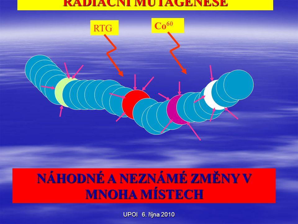 UPOl 6. října 2010 RADIAČNÍ MUTAGENESE NÁHODNÉ A NEZNÁMÉ ZMĚNY V MNOHA MÍSTECH RTG Co 60