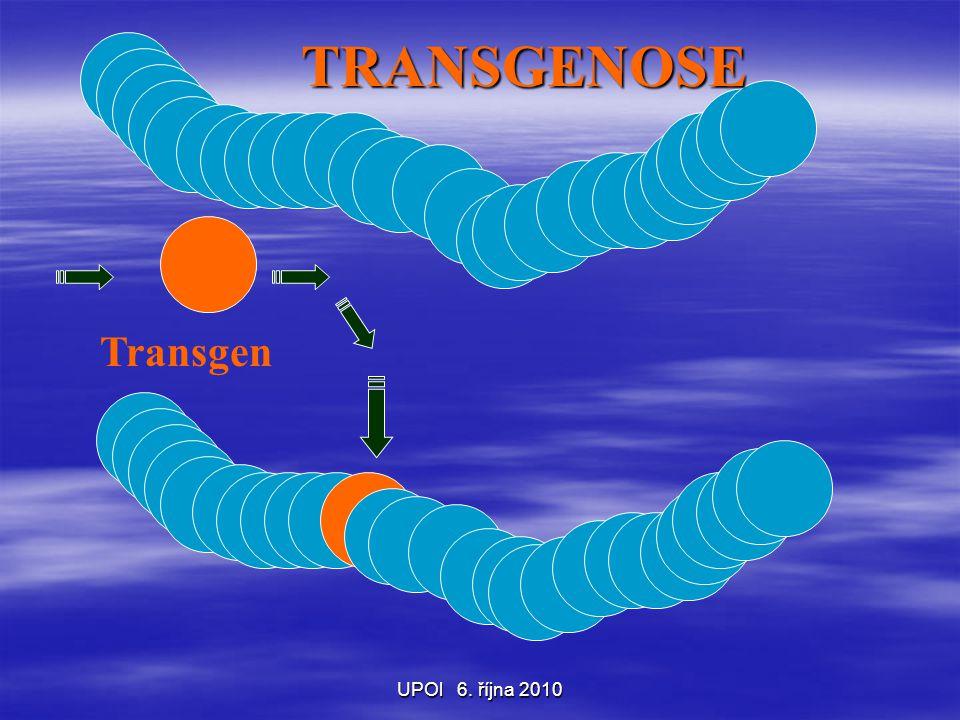 UPOl 6. října 2010 TRANSGENOSE Transgen