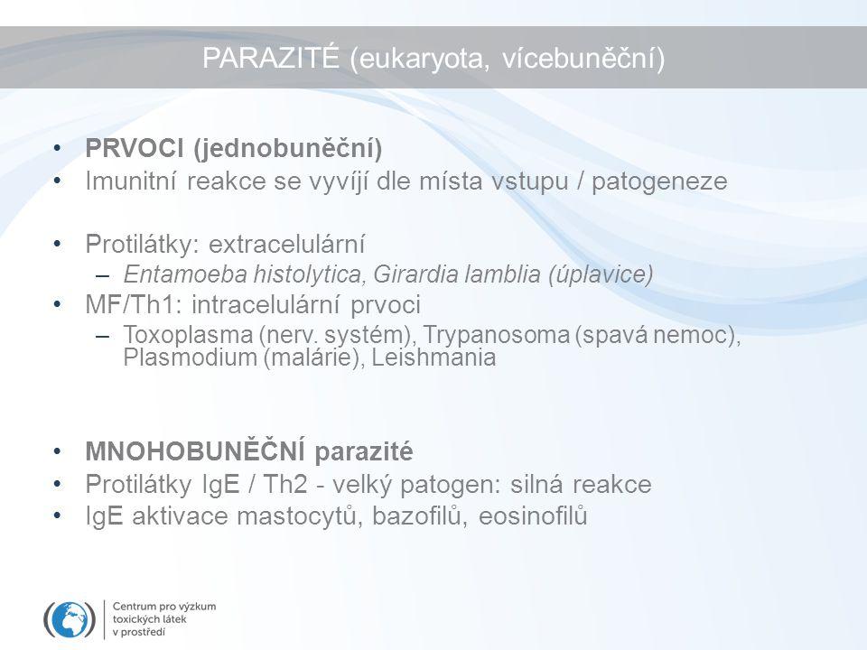PARAZITÉ (eukaryota, vícebuněční) PRVOCI (jednobuněční) Imunitní reakce se vyvíjí dle místa vstupu / patogeneze Protilátky: extracelulární –Entamoeba histolytica, Girardia lamblia (úplavice) MF/Th1: intracelulární prvoci –Toxoplasma (nerv.