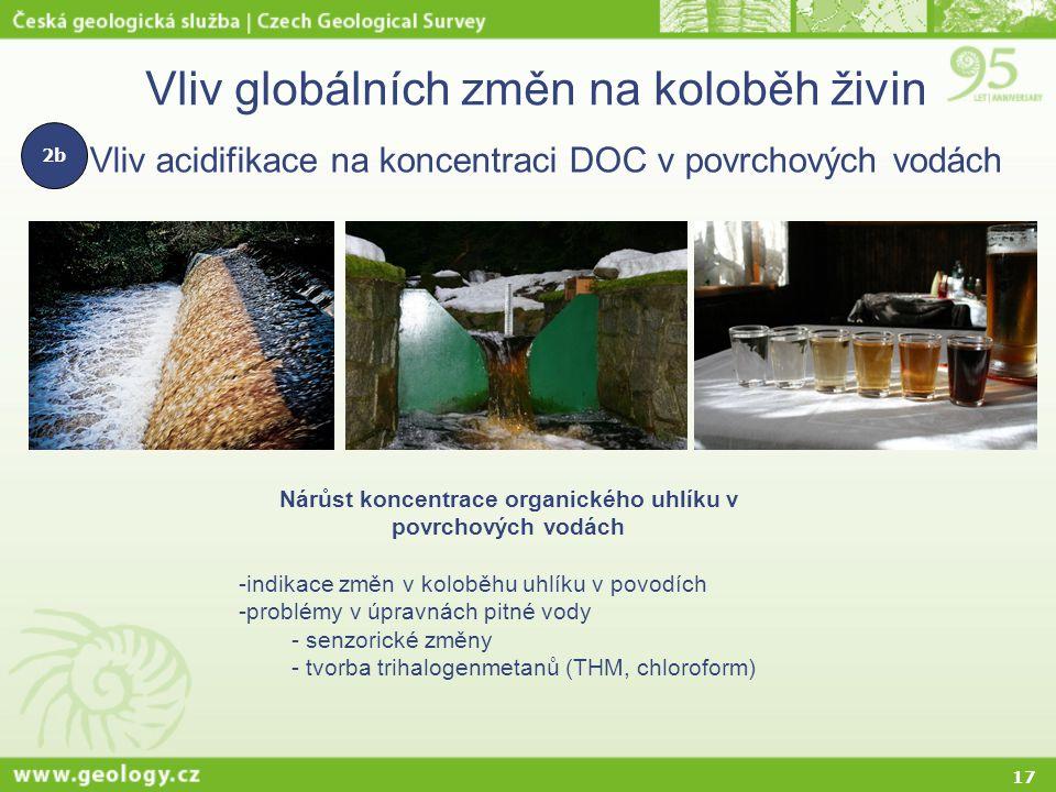 17 Vliv globálních změn na koloběh živin Vliv acidifikace na koncentraci DOC v povrchových vodách Nárůst koncentrace organického uhlíku v povrchových