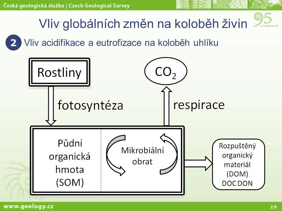 19 Vliv globálních změn na koloběh živin Vliv acidifikace a eutrofizace na koloběh uhlíku 2