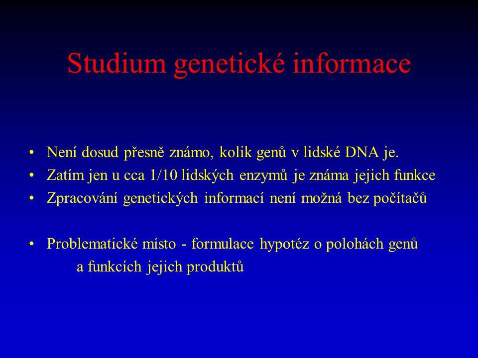 Studium genetické informace Není dosud přesně známo, kolik genů v lidské DNA je. Zatím jen u cca 1/10 lidských enzymů je známa jejich funkce Zpracován