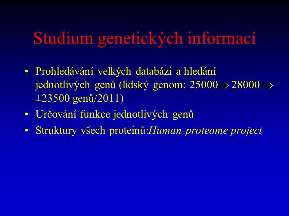 Studium genetických informací Prohledávání velkých databází a hledání jednotlivých genů (lidský genom: 25000  28000  ±23500 genů/2011) Určování funk