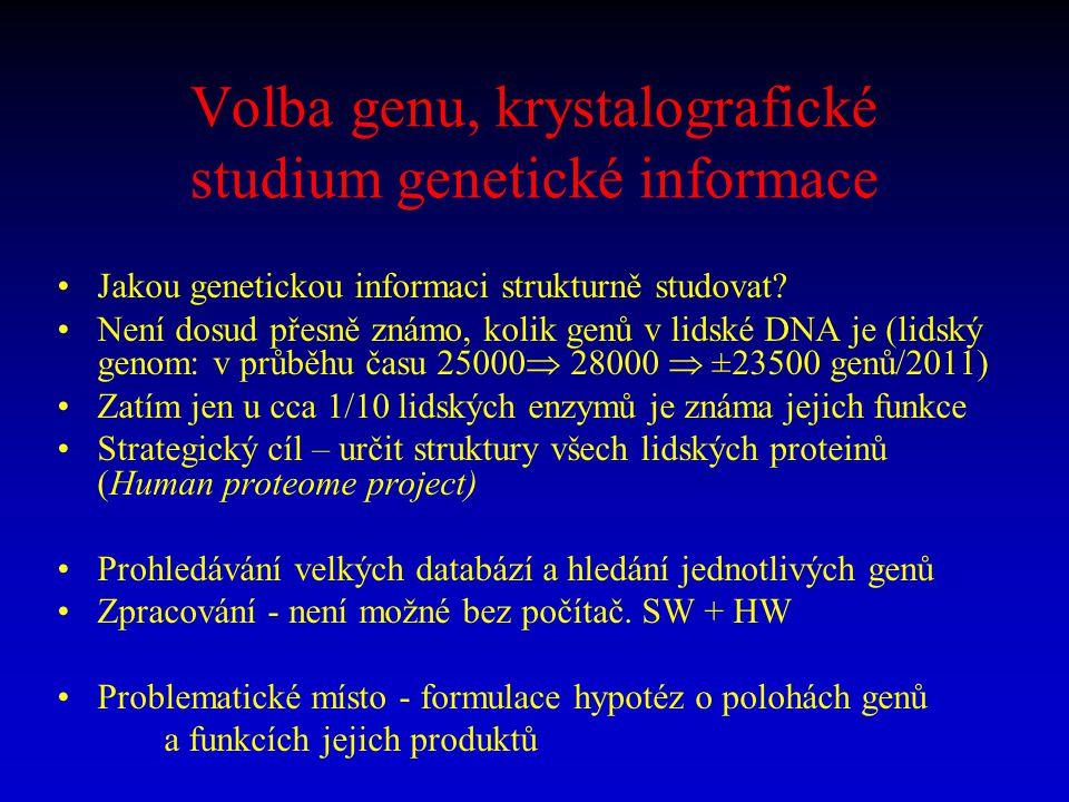 Volba genu, krystalografické studium genetické informace Jakou genetickou informaci strukturně studovat? Není dosud přesně známo, kolik genů v lidské