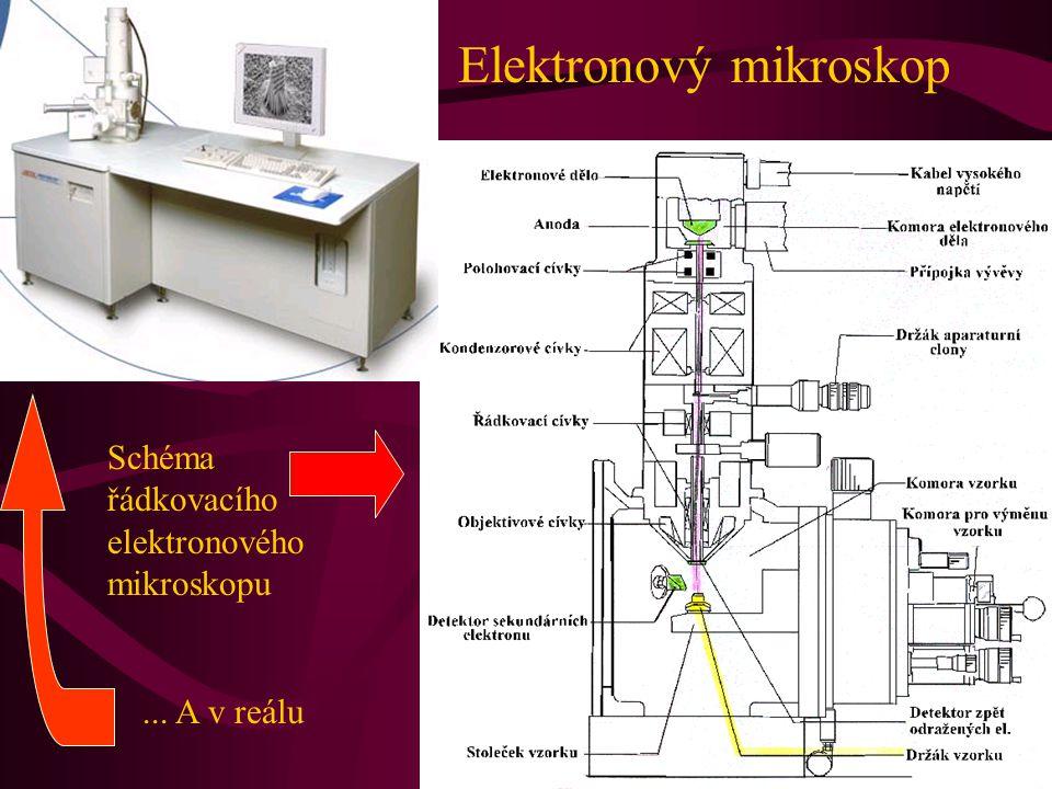 Elektronový mikroskop Schéma řádkovacího elektronového mikroskopu... A v reálu