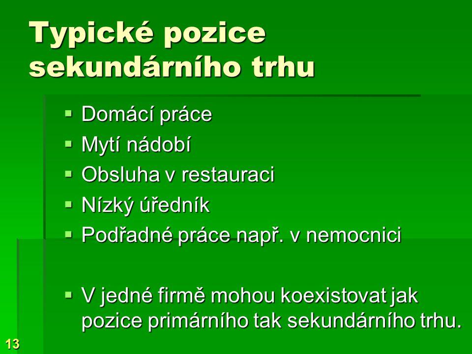 13 Typické pozice sekundárního trhu  Domácí práce  Mytí nádobí  Obsluha v restauraci  Nízký úředník  Podřadné práce např.
