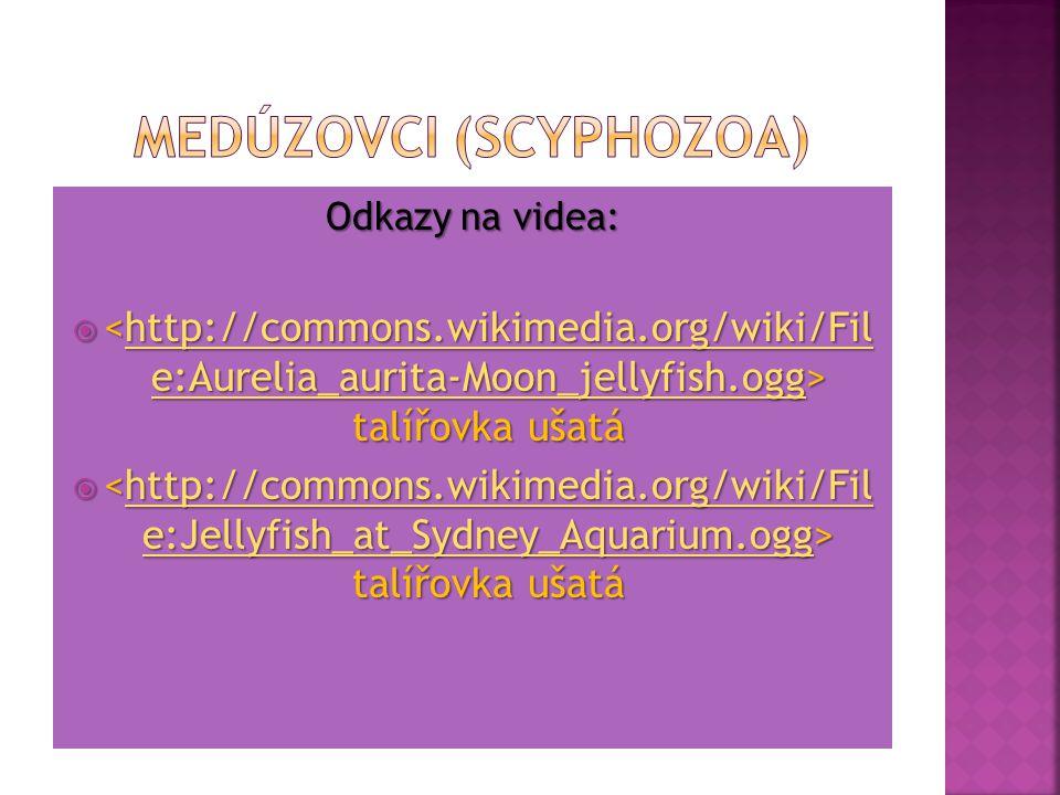 Odkazy na videa:  talířovka ušatá http://commons.wikimedia.org/wiki/Fil e:Aurelia_aurita-Moon_jellyfish.ogghttp://commons.wikimedia.org/wiki/Fil e:Au