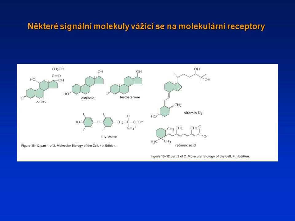 Některé signální molekuly vážící se na molekulární receptory