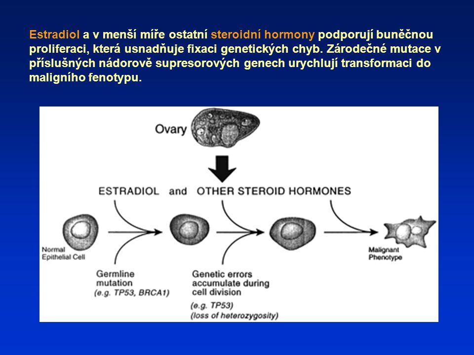 Estradiol a v menší míře ostatní steroidní hormony podporují buněčnou proliferaci, která usnadňuje fixaci genetických chyb.