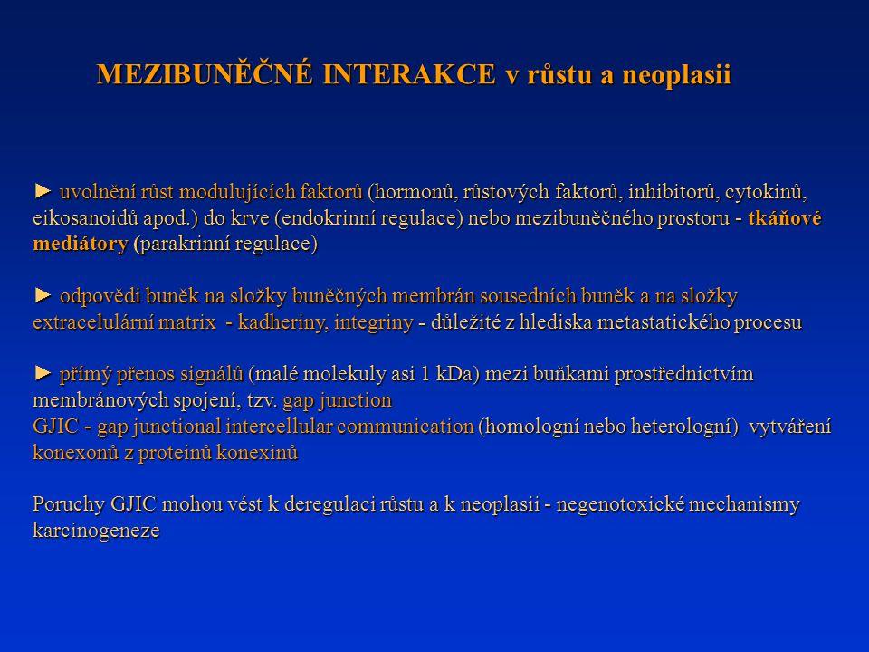 ► uvolnění růst modulujících faktorů (hormonů, růstových faktorů, inhibitorů, cytokinů, eikosanoidů apod.) do krve (endokrinní regulace) nebo mezibuněčného prostoru - tkáňové mediátory (parakrinní regulace) ► uvolnění růst modulujících faktorů (hormonů, růstových faktorů, inhibitorů, cytokinů, eikosanoidů apod.) do krve (endokrinní regulace) nebo mezibuněčného prostoru - tkáňové mediátory (parakrinní regulace) ► odpovědi buněk na složky buněčných membrán sousedních buněk a na složky extracelulární matrix - kadheriny, integriny - důležité z hlediska metastatického procesu ► přímý přenos signálů (malé molekuly asi 1 kDa) mezi buňkami prostřednictvím membránových spojení, tzv.