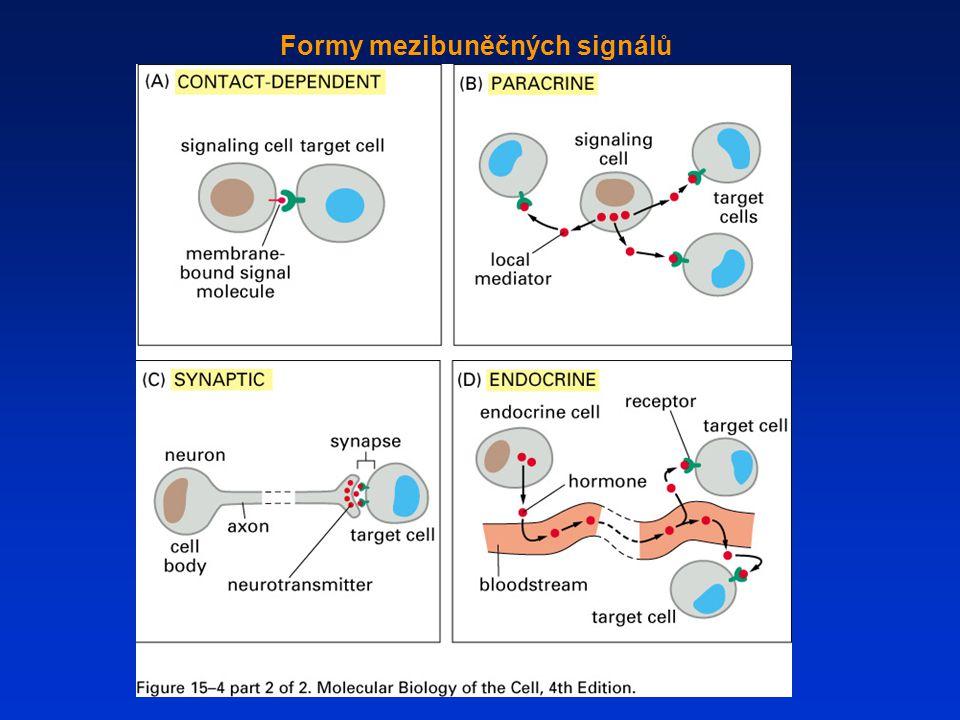 Formy mezibuněčných signálů