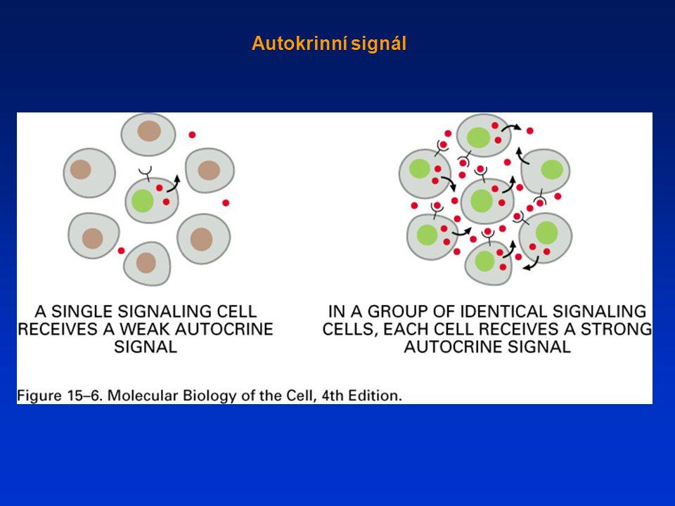 Vazba mimobuněčných signálních molekul na povrchové nebo vnitrobuněčné receptory
