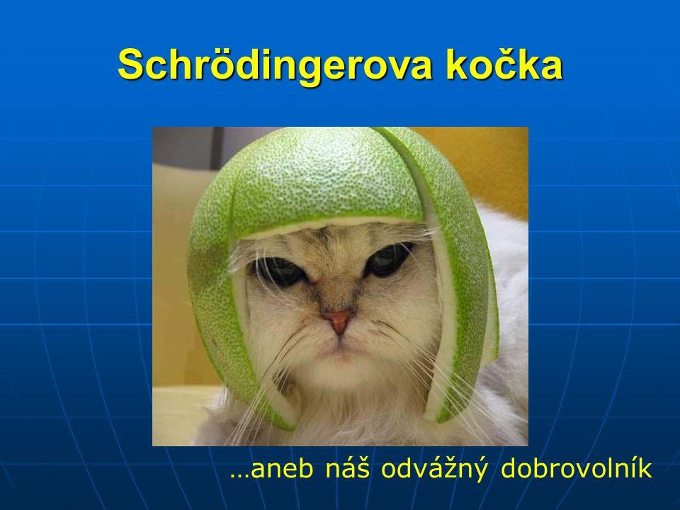 Schrödingerova kočka …aneb náš odvážný dobrovolník