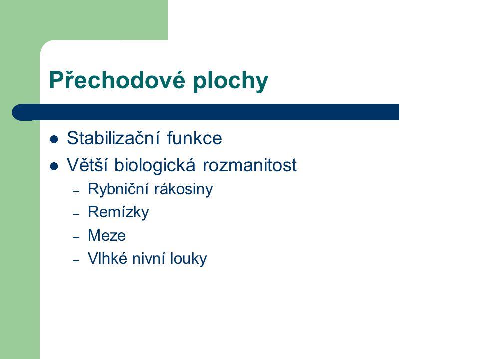 Přechodové plochy Stabilizační funkce Větší biologická rozmanitost – Rybniční rákosiny – Remízky – Meze – Vlhké nivní louky