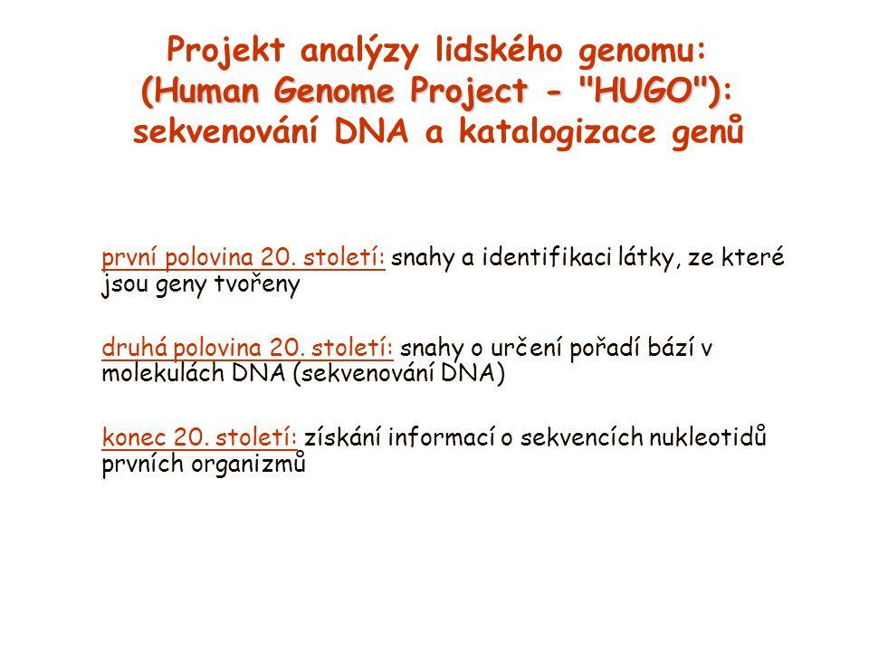 (Human Genome Project - HUGO ) Projekt analýzy lidského genomu: (Human Genome Project - HUGO ): sekvenování DNA a katalogizace genů první polovina 20.