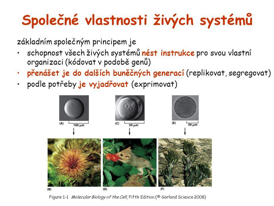 Společné vlastnosti živých systémů základním společným principem je schopnost všech živých systémů nést instrukce pro svou vlastní organizaci (kódovat