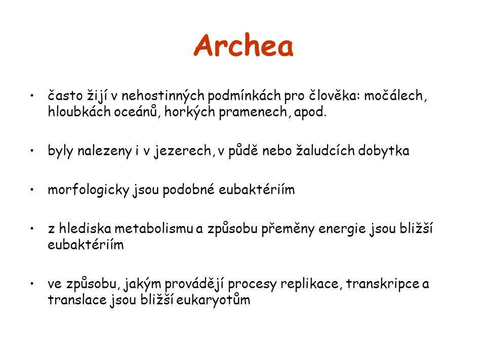 Archea často žijí v nehostinných podmínkách pro člověka: močálech, hloubkách oceánů, horkých pramenech, apod. byly nalezeny i v jezerech, v půdě nebo