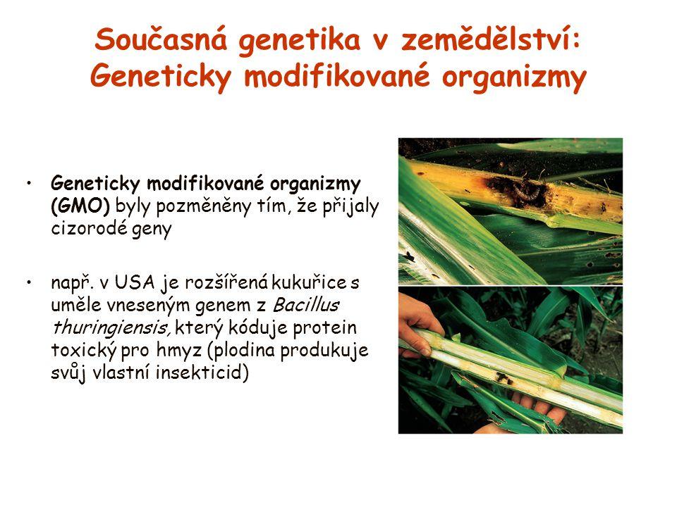Současná genetika v zemědělství: Geneticky modifikované organizmy Geneticky modifikované organizmy (GMO) byly pozměněny tím, že přijaly cizorodé geny