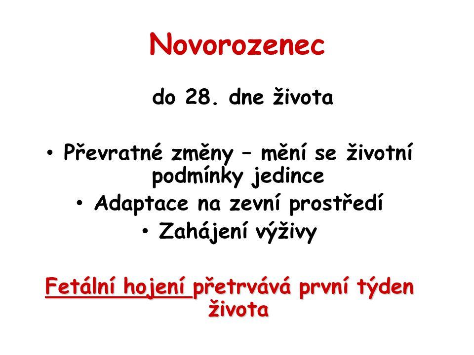 Novorozenec do 28.