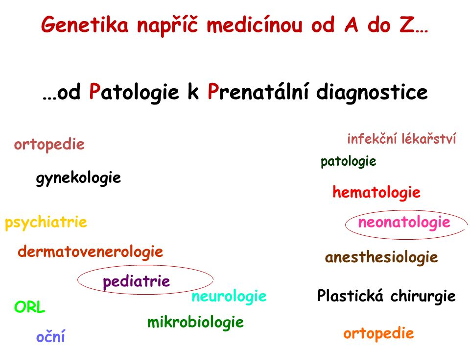 gynekologie psychiatrie pediatrie neonatologie ortopedie neurologie patologie mikrobiologie Plastická chirurgie ORL oční dermatovenerologie hematologie anesthesiologie infekční lékařství Genetika napříč medicínou od A do Z… … od Patologie k Prenatální diagnostice ortopedie