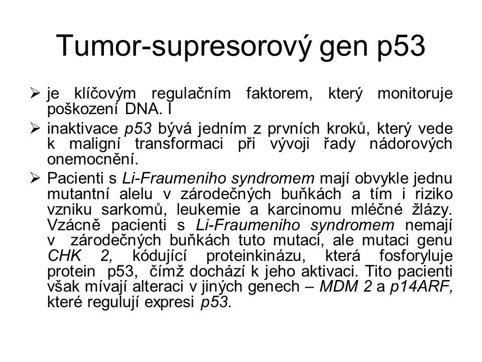 Tumor-supresorový gen p53  je klíčovým regulačním faktorem, který monitoruje poškození DNA. I  inaktivace p53 bývá jedním z prvních kroků, který ved