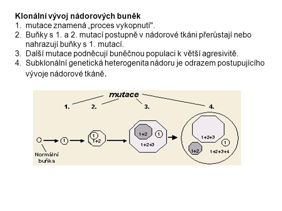 Heritabilita nádorů  Ačkoli některé formy nádorů jsou dědičné, většina vzniká na podkladě mutace somatických buněk a je způsobena endogenními chybami v replikaci DNA nebo jsou změny vedoucí k maligní transformaci navozeny účinkem kancerogenů.
