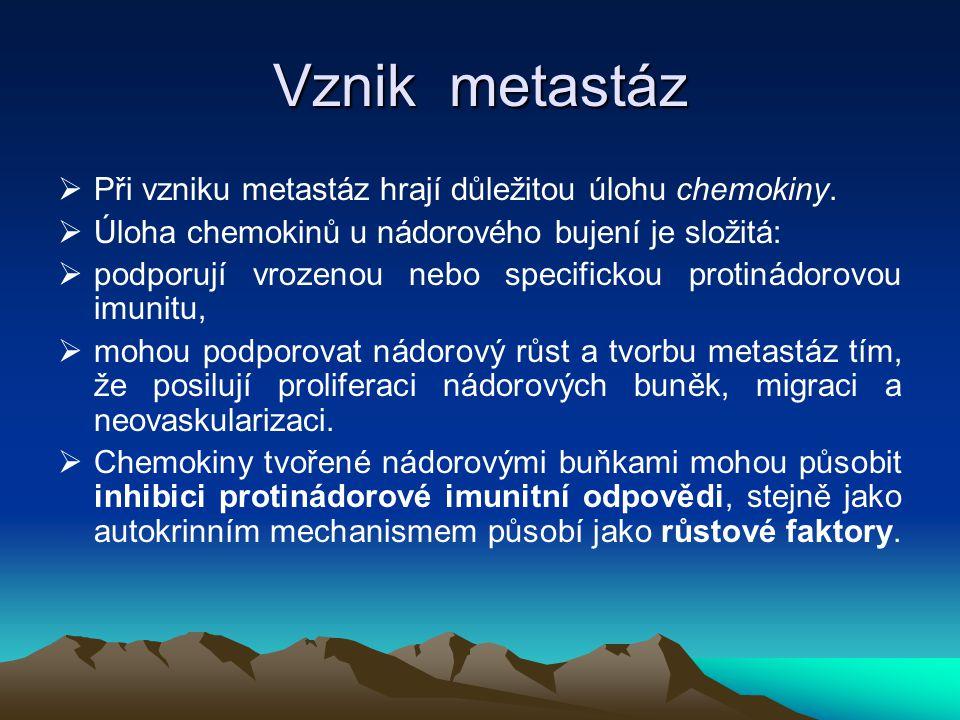 Vznik metastáz  Při vzniku metastáz hrají důležitou úlohu chemokiny.  Úloha chemokinů u nádorového bujení je složitá:  podporují vrozenou nebo spec
