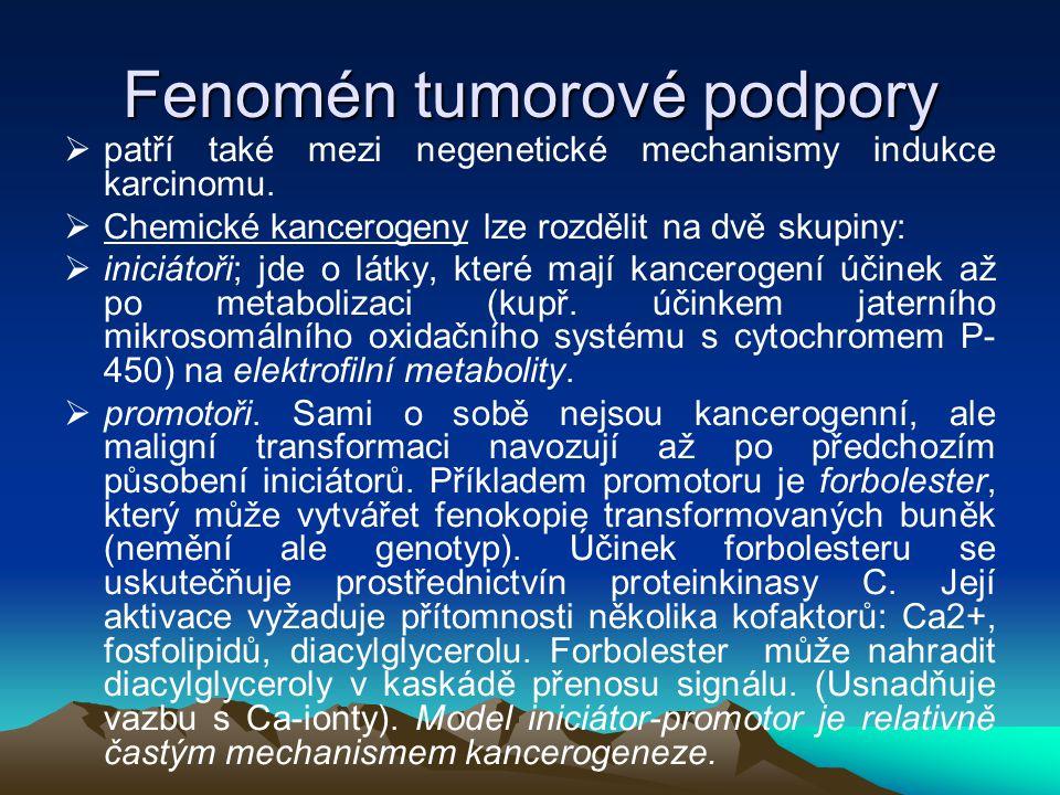 Fenomén tumorové podpory  patří také mezi negenetické mechanismy indukce karcinomu.  Chemické kancerogeny lze rozdělit na dvě skupiny:  iniciátoři;