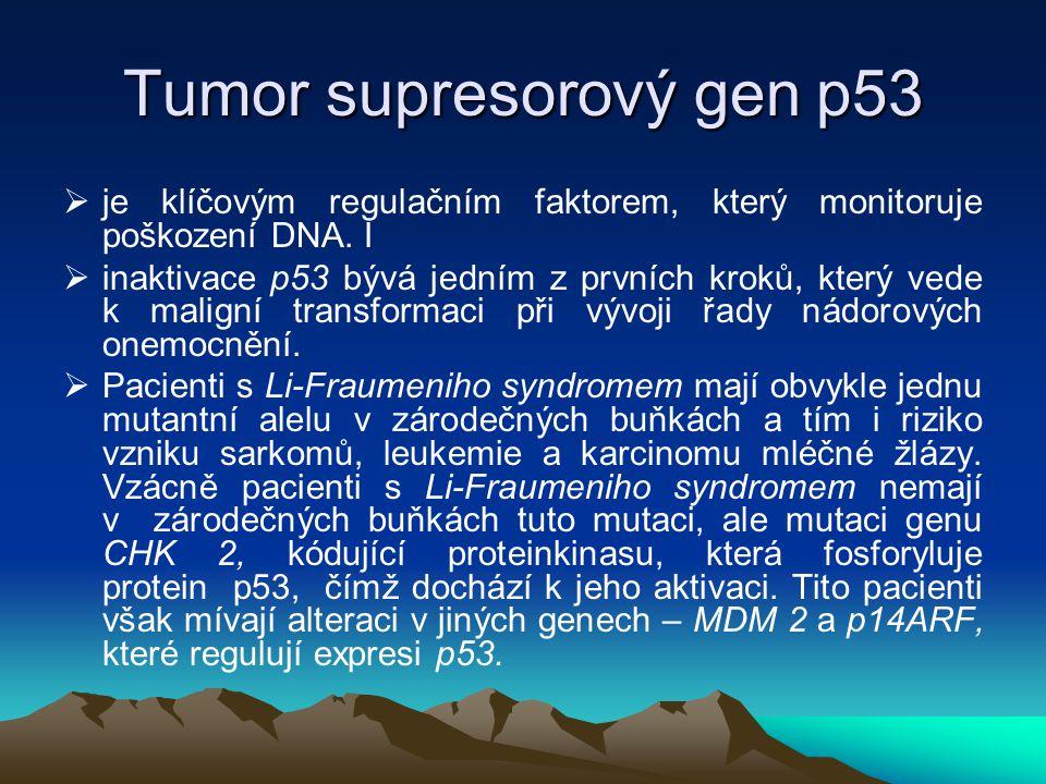 Tumor supresorový gen p53  je klíčovým regulačním faktorem, který monitoruje poškození DNA. I  inaktivace p53 bývá jedním z prvních kroků, který ved