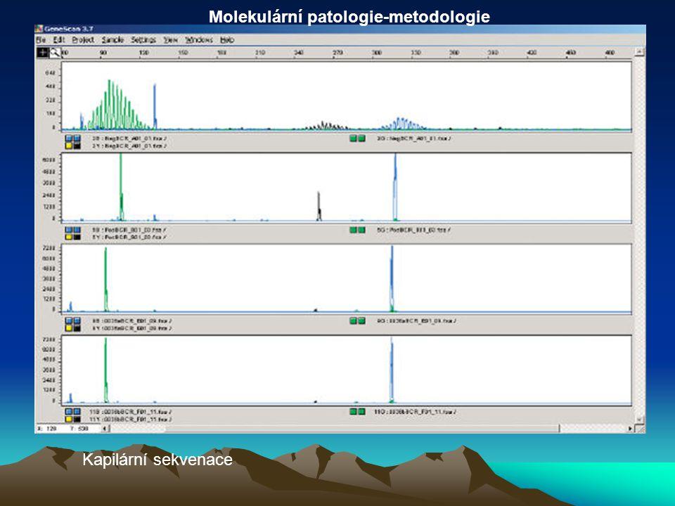 Kapilární sekvenace Molekulární patologie-metodologie