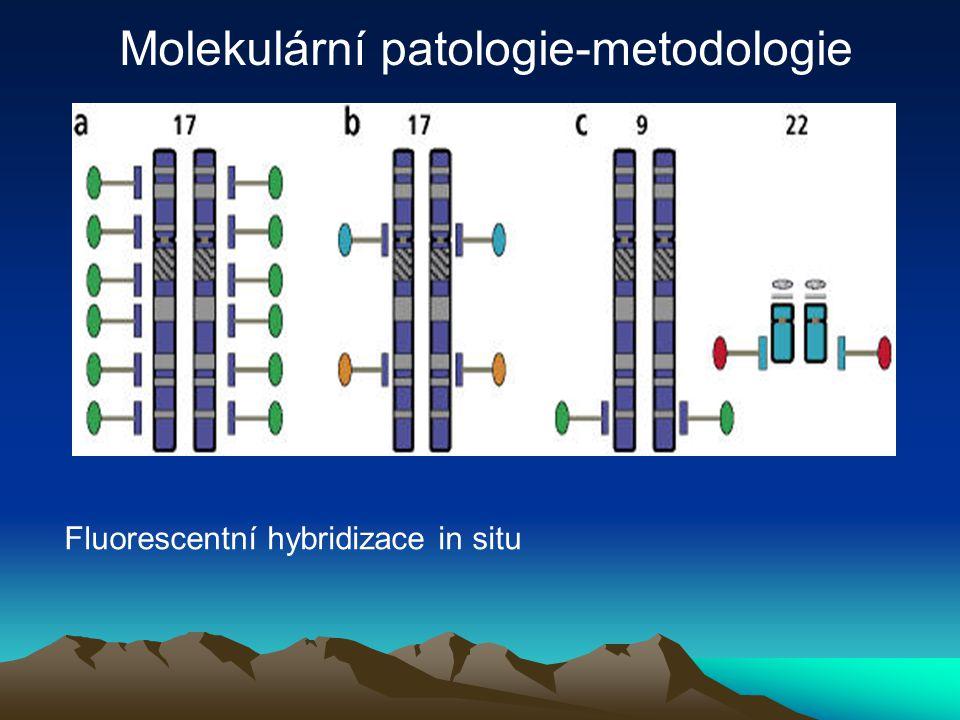 Fluorescentní hybridizace in situ Molekulární patologie-metodologie